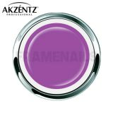 Gel Options Color Majestic Violet