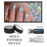 Holo Powder Silver