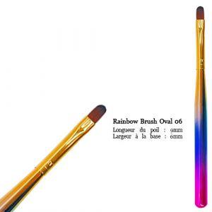 Rainbow Brush Oval No6