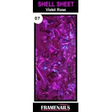 Shell Sheet no7 Violet Rose