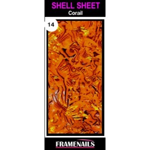Shell Sheet no14 Corail