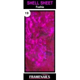 Shell Sheet no19 Fushia
