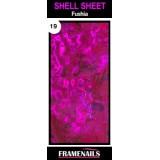 Shell Sheet no19 Fushia