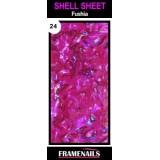 Shell Sheet no24 Rose