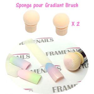Eponge Boule pour Gradiant Sponge Brush (x2)